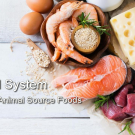 Aligning the Food System: Nutrition in Animal-Source Foods